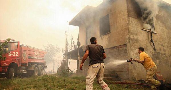 Manavgat'taki Yangın Felaketinin Bilançosu Dehşet Verici