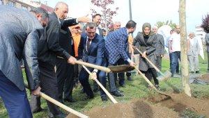 Zeytinburnu'nda 'Geleceğe Nefes' için ağaç dikildi