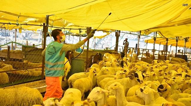 Avcılar'da kurban satış ve kesim alanları dezenfekte edildi