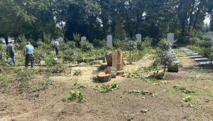 Kestiği ağaçlar mezarlığın üzerine devrildi