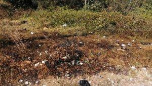 Kağıthane'de yeşil alanı yakan şahıs, kaza yapınca yakaladı