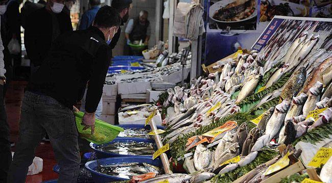 Balık tezgahlarında lüfer bolluğu devam ediyor