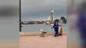 Tuzla'da temizlik personeli ve köpeğin yürekleri ısıtan görüntüsü