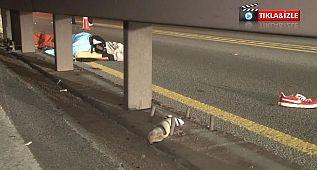 E-5 Karayolu'nda feci kaza: Ticari taksinin çarptığı yaya hayatını kaybetti